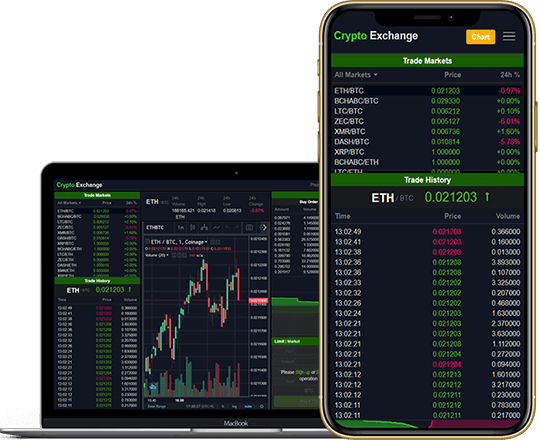 buy cryptocurrency exchange software